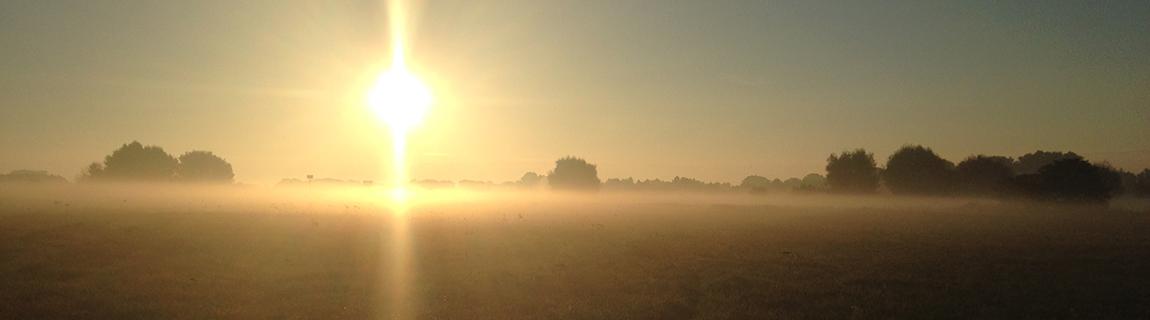 mistige morgens